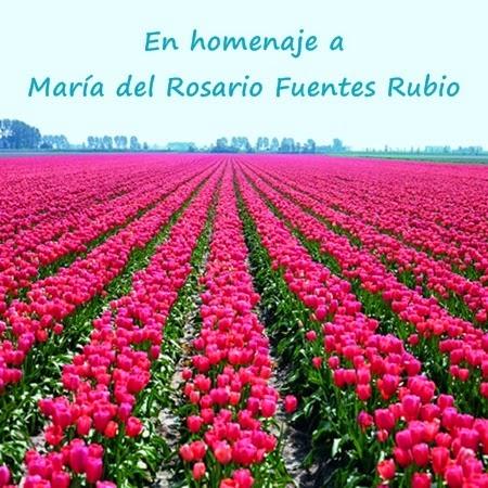 María del Rosario Fuentes Rubio  Homenaje