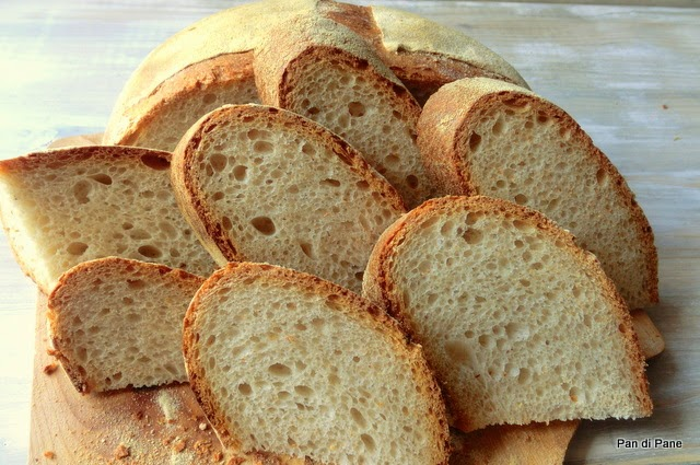 Pasta fresca al kamut ricetta