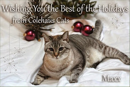 Merry Christmas Colehaus Cats and family!