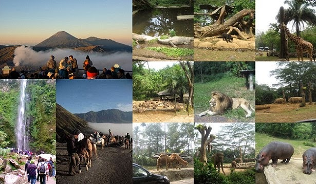 Surabaya, Malang and Mt Bromo 4 Days / 3 Nights Tour Package
