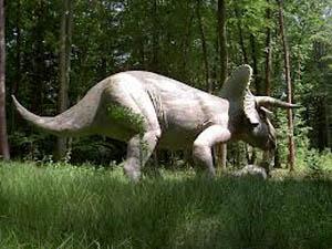 Triceratops - Binatang Purbakala