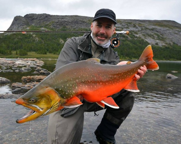 Big Fishes Of The World Arctic Char Salvelinus Alpinus