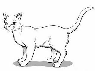Characters Expressions By Type Headsimple Type Aboy as well How To Draw Anime And Manga Hair Female further Pokemon Are Cute 3 as well Chibi Templates as well How To Draw Warrior Cats. on anime manga drawings and drawn