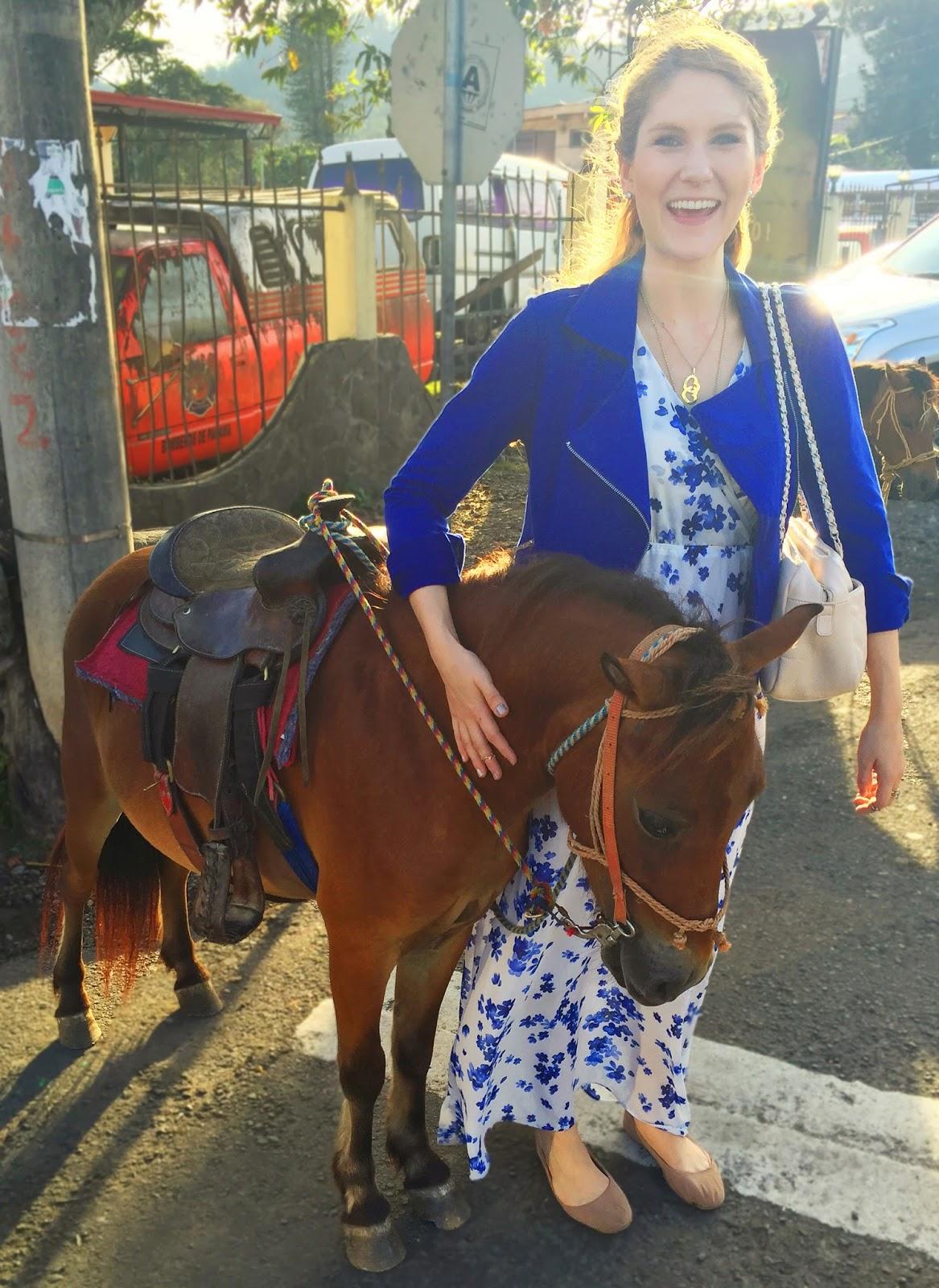 Cute Pony on my vacations in Boquete, Panama