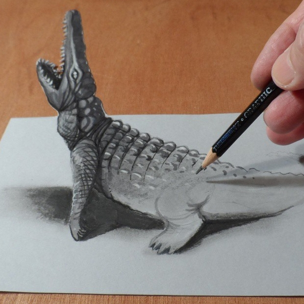 16-Crocodile-Sandor-Vamos-3D-Optical-Illusions-Anamorphic-Drawings-Videos-www-designstack-co