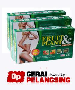 obat pelangsing tubuh fruit plant