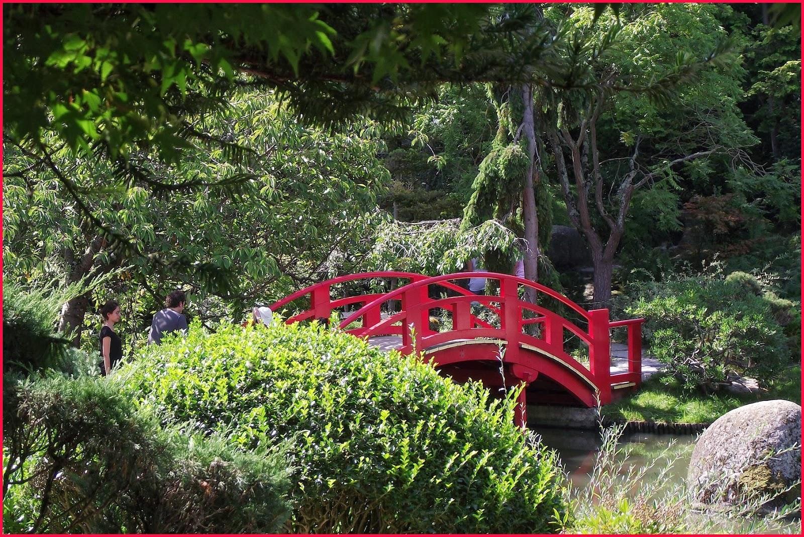 pigeonnieresplendy2 le petit pont de bois. Black Bedroom Furniture Sets. Home Design Ideas