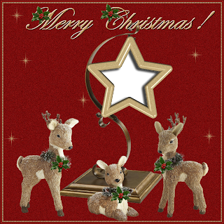 FRAME 18 CHRISTMAS 2013    -   FREEBIE