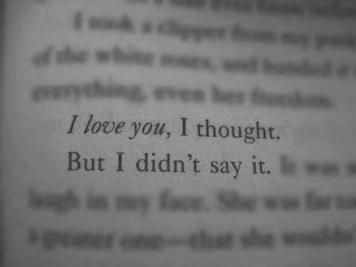 Te amo, pensé.