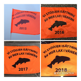 Jag bidrar till mer lax i Vänern