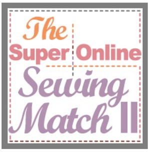 Sewing Contest Judge 2015