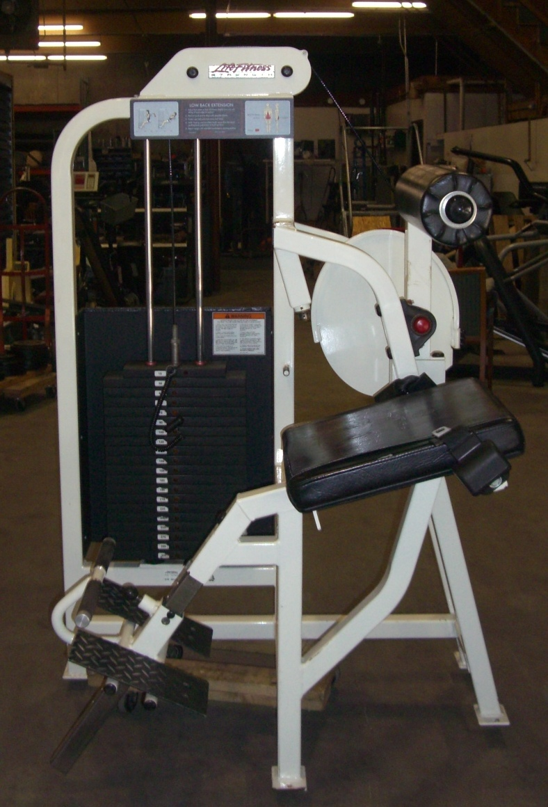 Life fitness back extension bench price