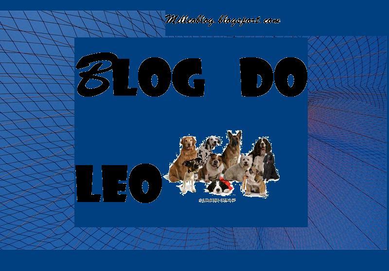 blog do leo