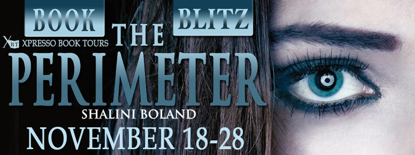 THE PERIMETER - Book Blitz