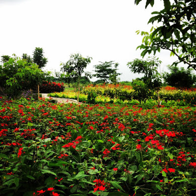 Taman Harmoni Surabaya Akan Semakin Luas