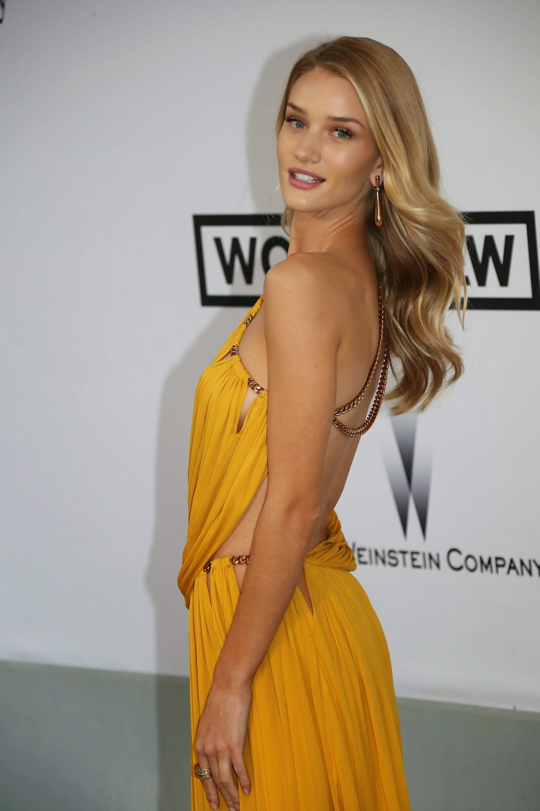 Sharon Stone, Cara Delevingne, Rosie Huntington and Izabel Goulart shine in Cannes‏