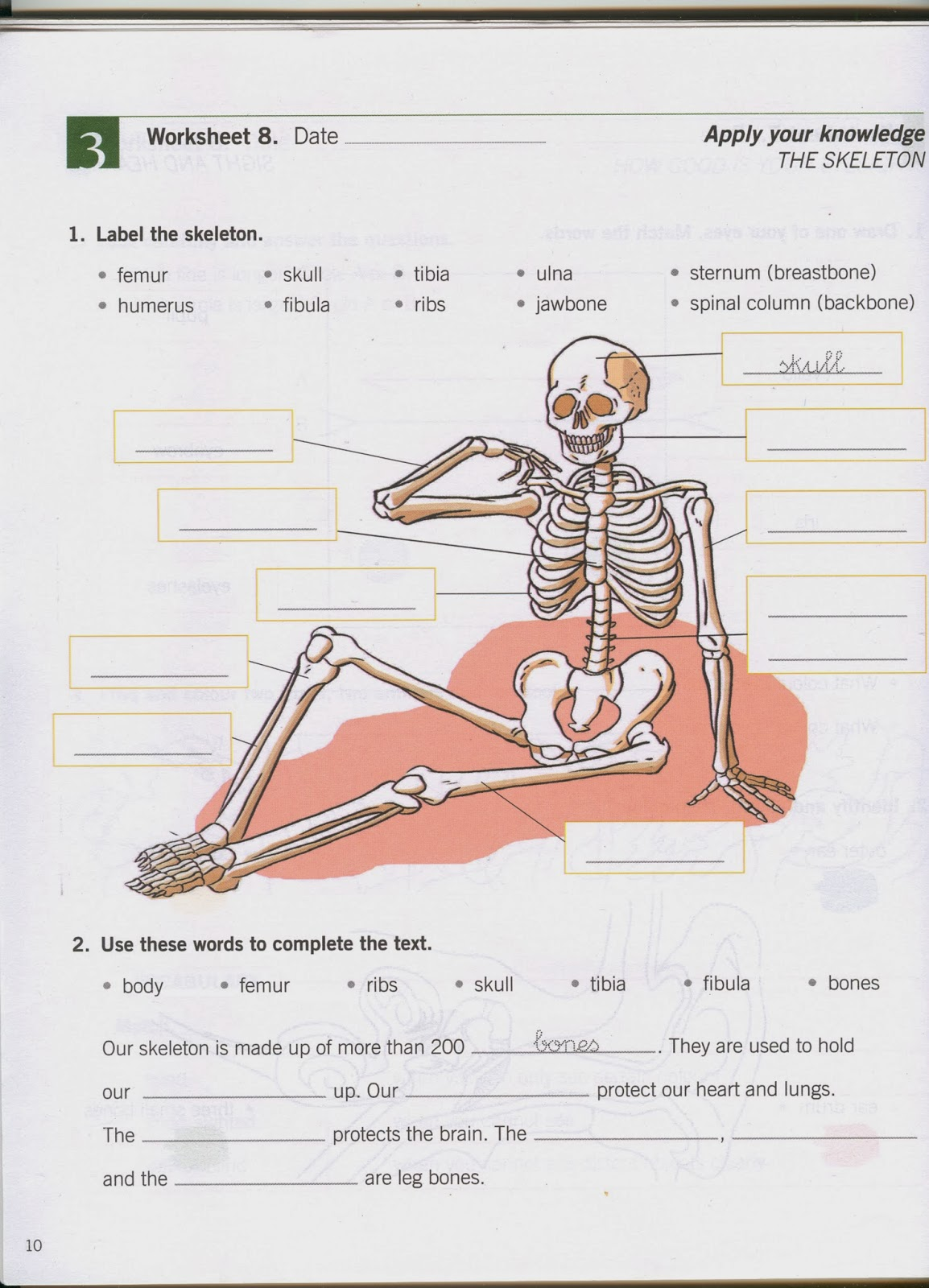 physioex 9 0 exercise 10 activity Posts: 1 rep: 0 0 4 years ago  exercise 10: acid-base balance: activity 1:  hyperventilation lab report pre-lab quiz  20 9 751 31 32 3007/11/13 page 3.