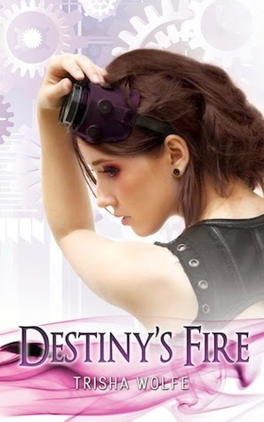 Destiny's Fire book cover