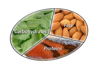 πρωτεΐνη υδατάνθρακας και λίπους