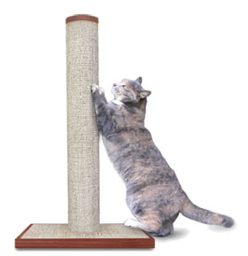 How Stop Get Cat Use Scratching Post