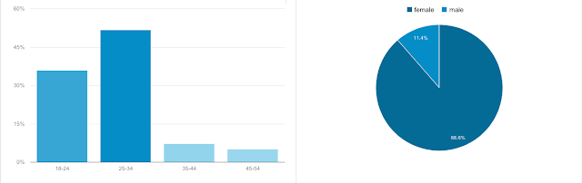 Blog demographics on Google Analytics