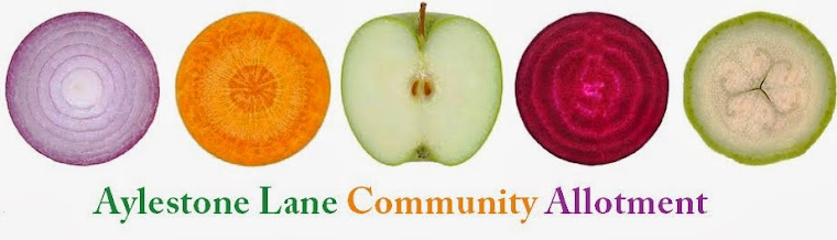 Aylestone Lane Community Allotment (was Oadby and Wigston Community Food Champions) Leicester