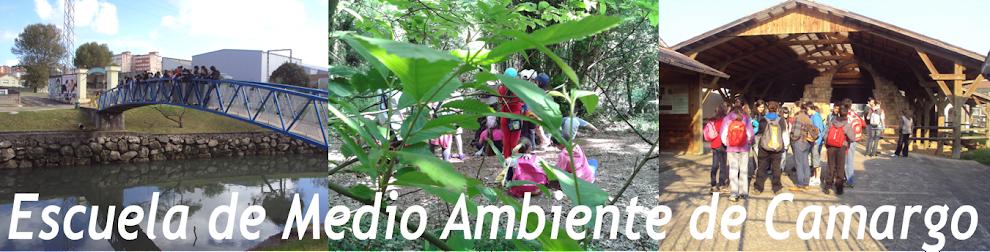 Escuela de Medio Ambiente de Camargo