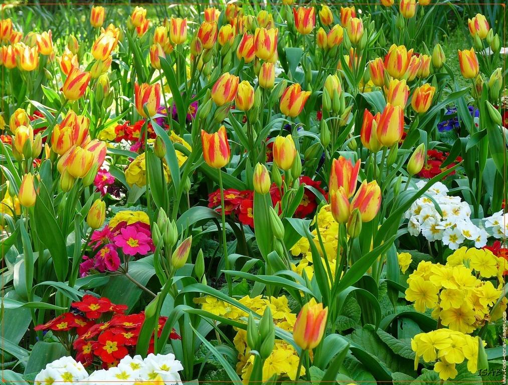 La bonne toile swap de printemps - Couleur du printemps ...