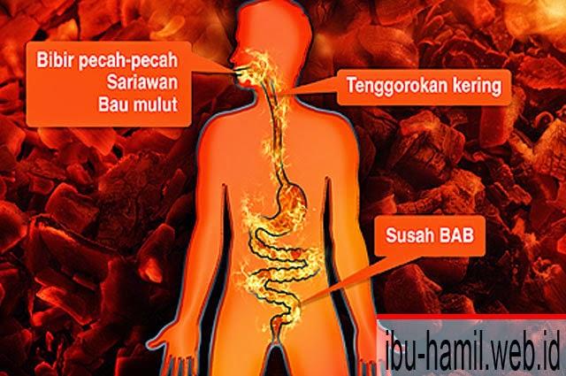 Resep Tradisioal Obat Panas Dalam untuk Ibu Hamil