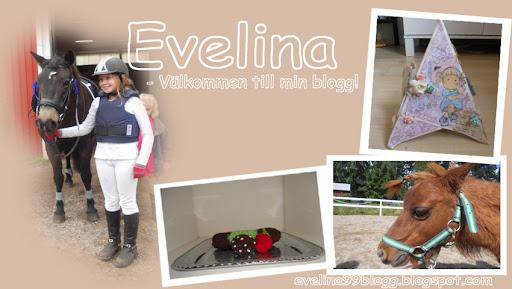evelina99blogg.blogspot.com