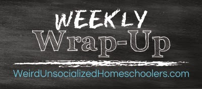 http://www.weirdunsocializedhomeschoolers.com/weekly-wrap-up-the-one-in-which-my-summer-is-passing-too-quickly/#comment-62159
