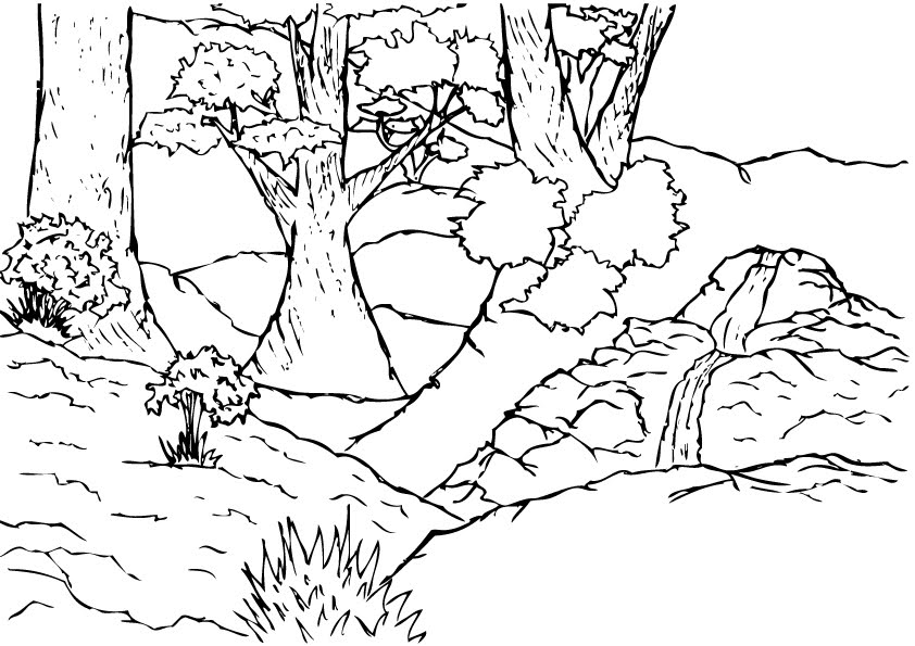 forest background coloring pages - photo#16