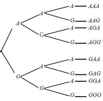 Rumus peluang statistika matematika contoh soal pengertian materi diagram pohon pelemparan 3 keping uang logam ccuart Images