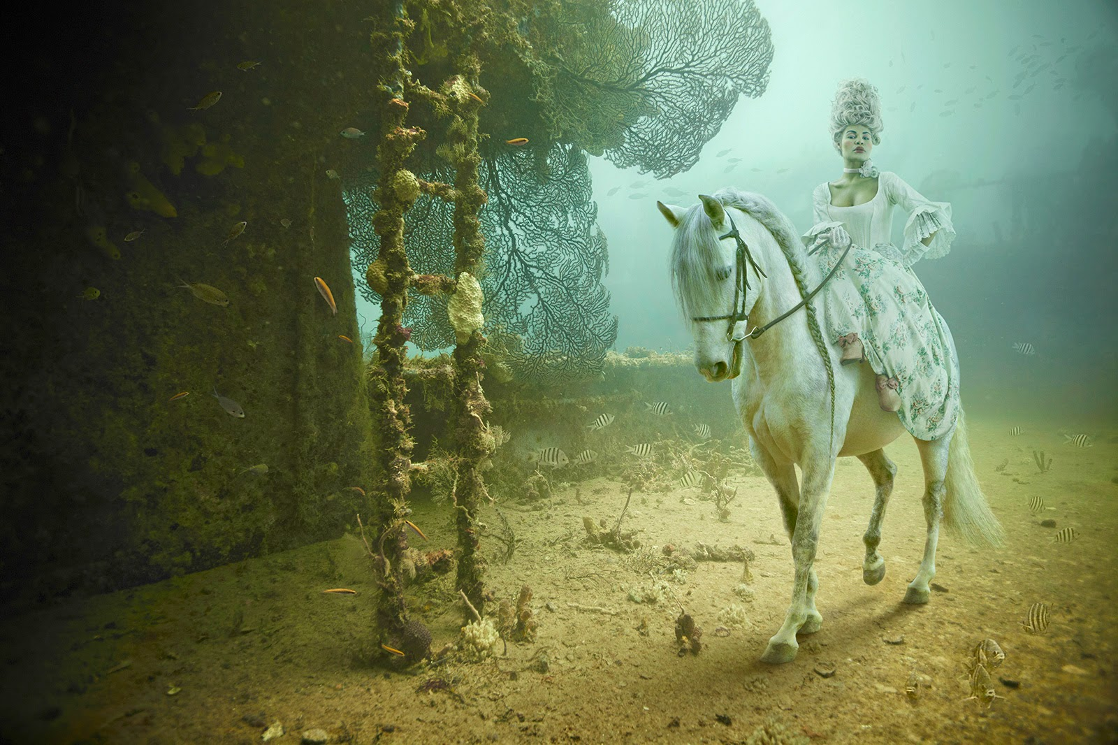 02-Andreas-Franke-Surreal-Artificial-Reef-Photography-www-designstack-co