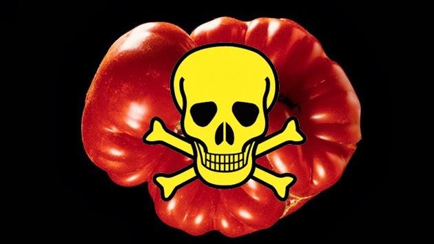 Monsanto Transgénicos Nocivos Para La Salud