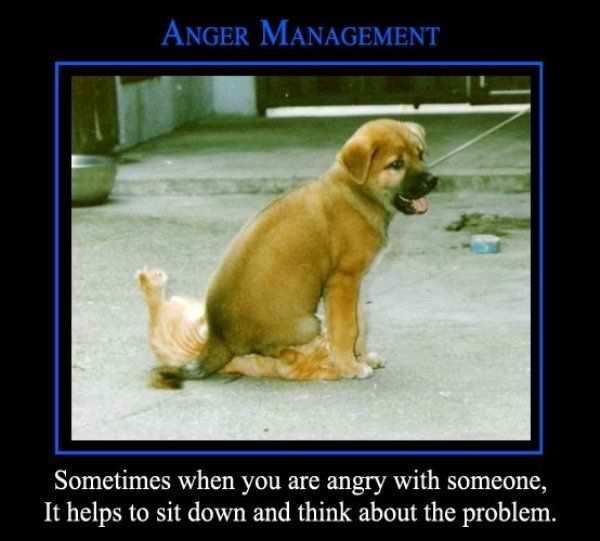 Demotivational-pictures-anger_Management.jpg