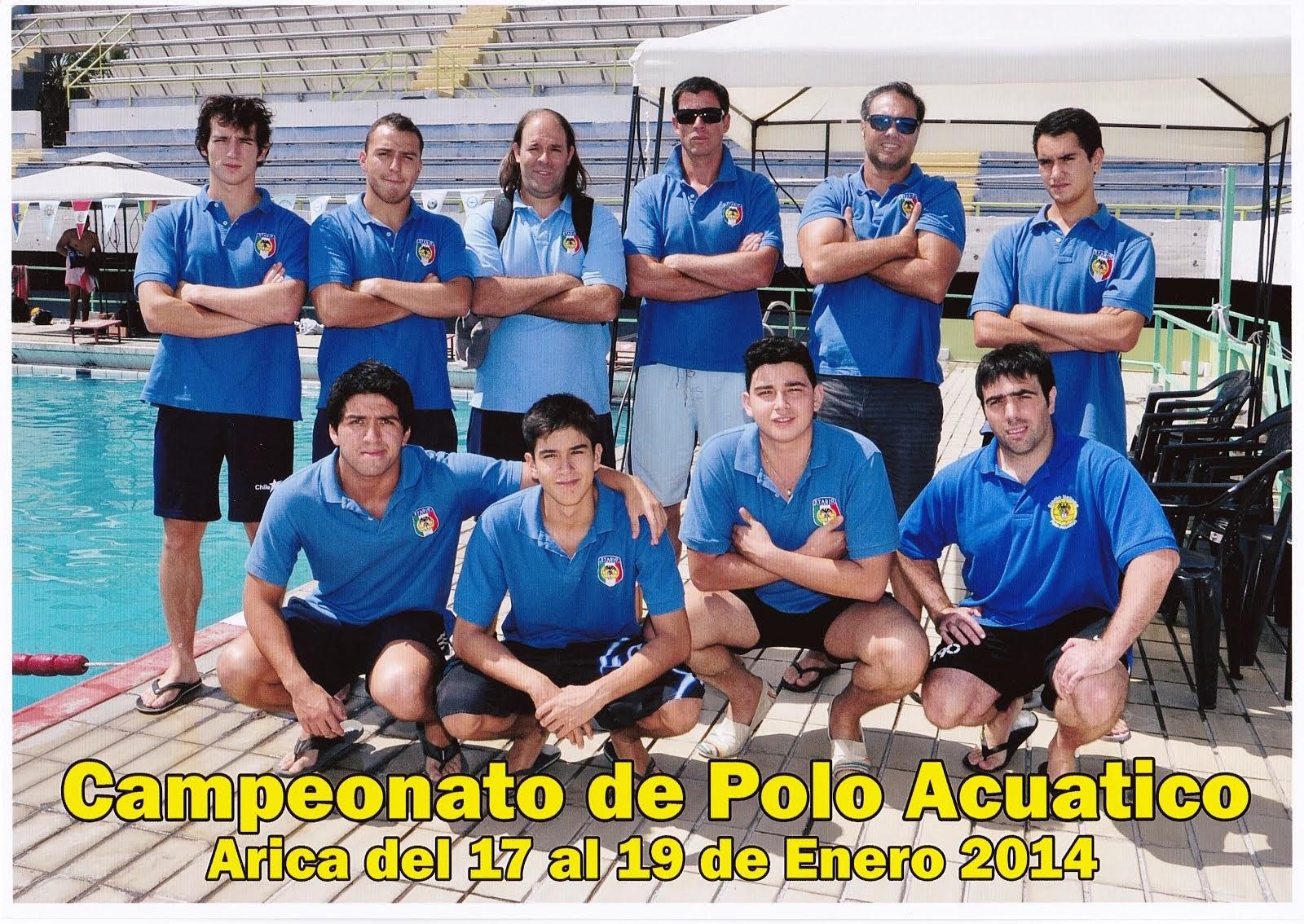 Arica 2014