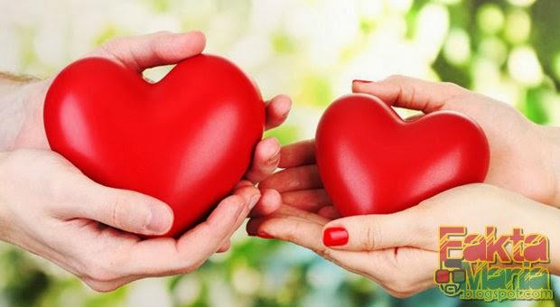 10 Fakta Tentang Jantung Yang Membuat Anda Bersyukur
