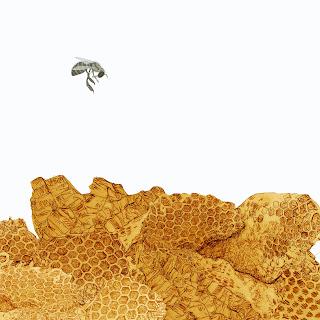 abeja, panales de miel,  dibujo