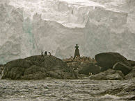 ELEPHANT ISLAND