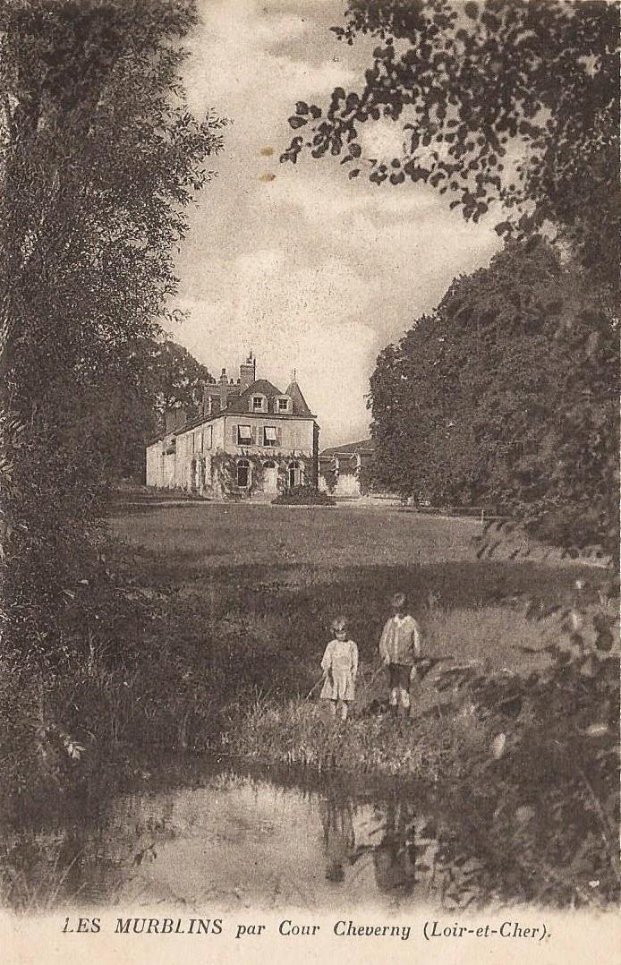 Château des Murblins - Cour-Cheverny