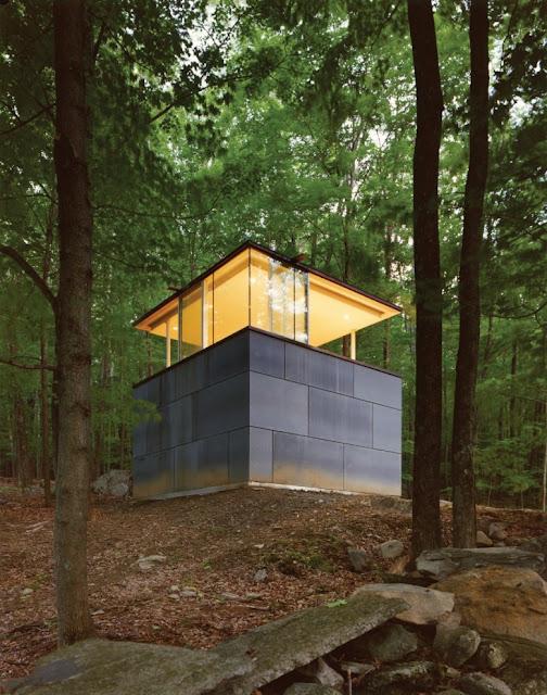 Библиотека-кабинет в лесу