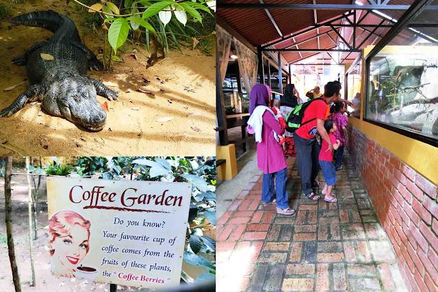 Percutian Di Taman Rama-Rama Melaka Part