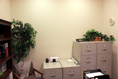 The Fake Ficus Making Office Appearances For A Very Long Time