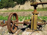 Detall dels engranatges de la Sínia de Cal Curandero
