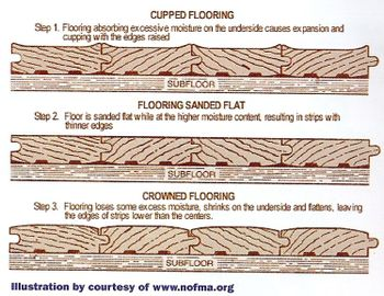 Notes from lamunyon 39 s hardwood flooring and water damage for Hardwood floors warping