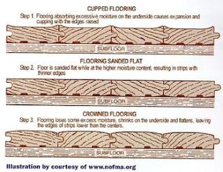 Hardwood flooring and water damage