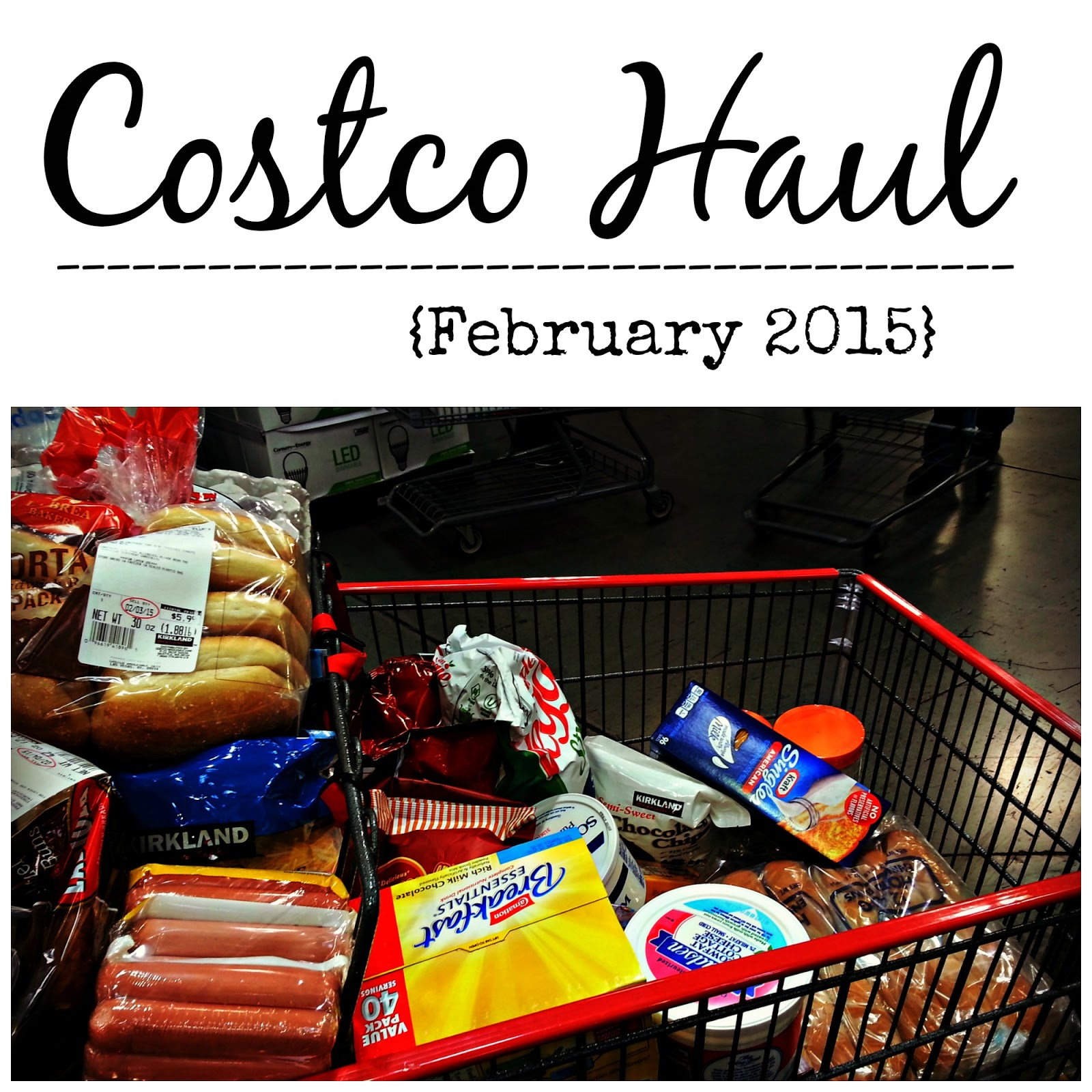 Costco Grocery Haul February 2015 -- VIDEO