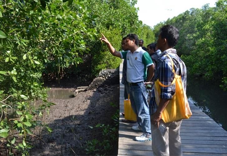 Praktek Pengenalan Jenis Mangrove di Tracking Tahura Mangrove