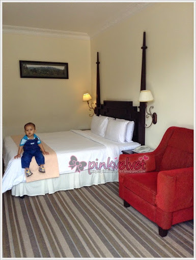 De La Ferns, Cameron Highlands, Hotel Best